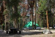 Forest Service Campgrounds